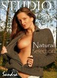 Sandra in Natural Selectionx5ge9rwlqt.jpg