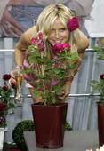 Heidi Klum Mc Donalds Foto 162 (Хайди Клум  Фото 162)
